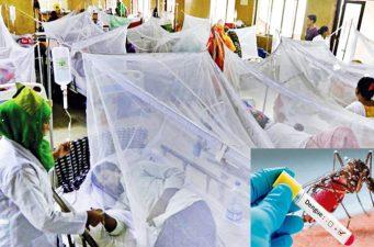 দেশে ২৪ ঘন্টায় ডেঙ্গু রোগে ২ জনের মৃত্যু, ১৯৭ জন হাসপাতালে ভর্তি