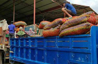 হিলি স্থলবন্দরে বেড়েছে কাঁচা মরিচের আমদানি দাম কমার আশা ব্যবসায়ীদের
